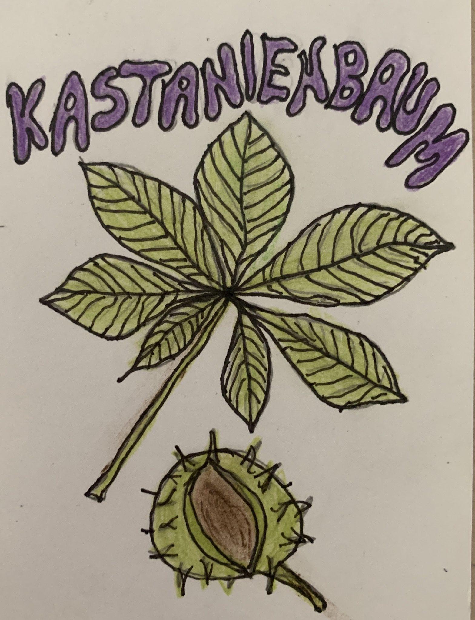 Kindertagesgruppe Kastanienbaum